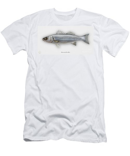 European Seabass Dicentrarchus Labrax - Bar Commun - Loup De Mer - Lubina - Havabor - Seafood Art Men's T-Shirt (Athletic Fit)