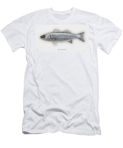 European Seabass Dicentrarchus Labrax - Bar Commun - Loup De Mer - Lubina - Havabor - Seafood Art Men's T-Shirt (Athletic Fit)