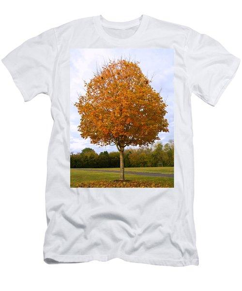 Fall Sugar Maple Men's T-Shirt (Slim Fit) by Melinda Fawver