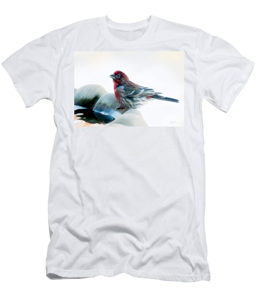 Finch Men's T-Shirt (Athletic Fit)