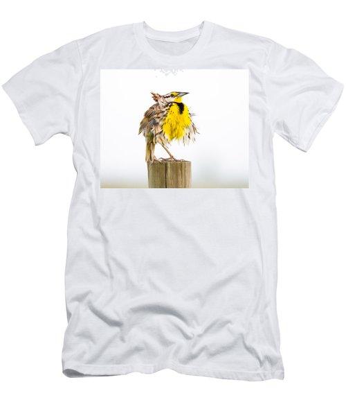 Flluffy Meadowlark Men's T-Shirt (Athletic Fit)