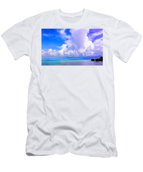 Florida Bay At Shell Pass Filtered Men's T-Shirt (Athletic Fit)