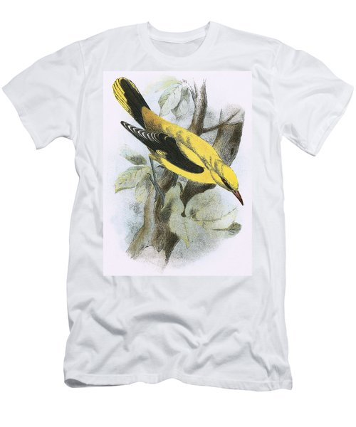 Golden Oriole Men's T-Shirt (Slim Fit) by English School