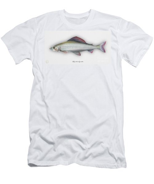 Grayling - Thymallus Thymallus - Ombre Commun - Harjus - Flyfishing - Trout Waters - Trout Creek Men's T-Shirt (Athletic Fit)