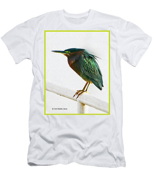 Green Heron In Scottsdale Men's T-Shirt (Athletic Fit)