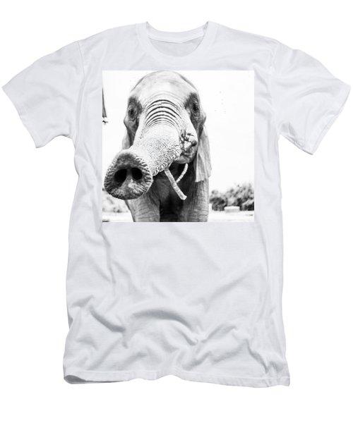 Helloooooooo Men's T-Shirt (Athletic Fit)