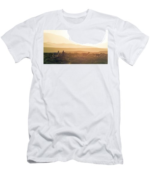 Herd Of Llamas Lama Glama In A Desert Men's T-Shirt (Slim Fit) by Panoramic Images