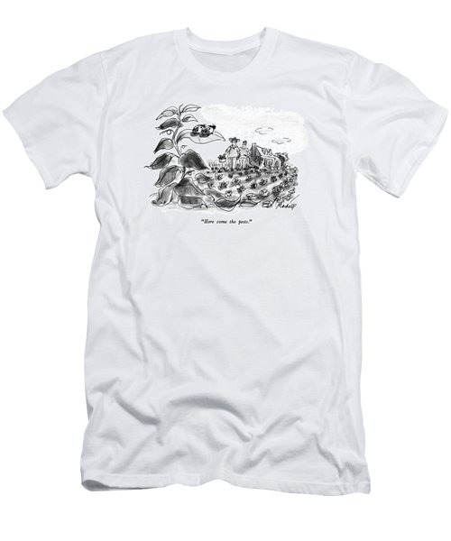 Here Come The Pests Men's T-Shirt (Athletic Fit)