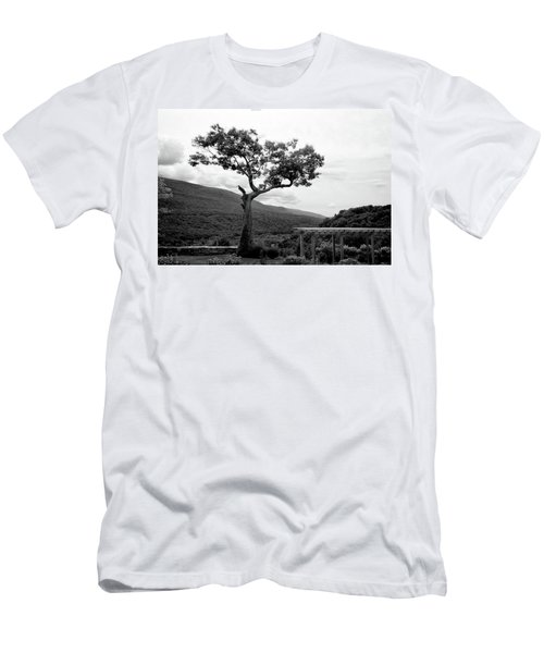 Hildene Tree 5689 Men's T-Shirt (Slim Fit) by Guy Whiteley
