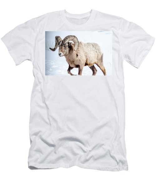 Big Horns On This Big Horn Sheep Men's T-Shirt (Athletic Fit)