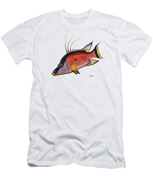 Hogfish On White Men's T-Shirt (Slim Fit) by Steve Ozment
