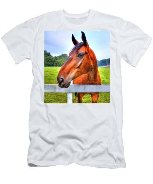 Horse Closeup Men's T-Shirt (Athletic Fit)