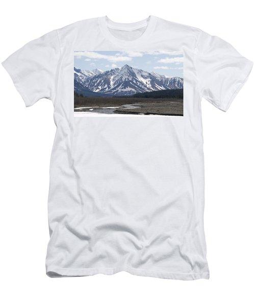 Inside Denali National Park 4 Men's T-Shirt (Athletic Fit)