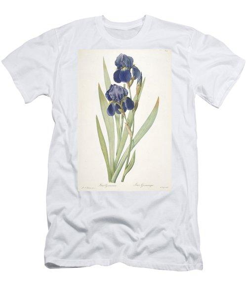 Iris Germanica Bearded Iris Men's T-Shirt (Athletic Fit)