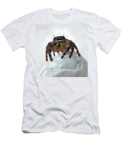Jumper Spider 2 Men's T-Shirt (Athletic Fit)