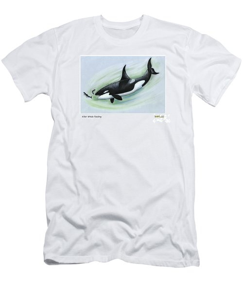 Killer Whale Feeding Men's T-Shirt (Athletic Fit)