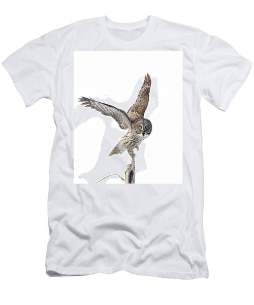 Lapland Owl On White Men's T-Shirt (Slim Fit) by Mircea Costina Photography