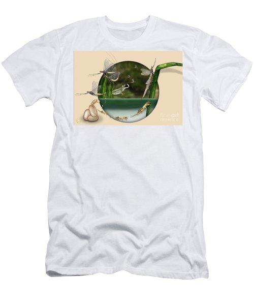 Life Cycle Of Mayfly Ephemera Danica - Mouche De Mai - Zyklus Eintagsfliege - Stock Illustration - Stock Image Men's T-Shirt (Athletic Fit)