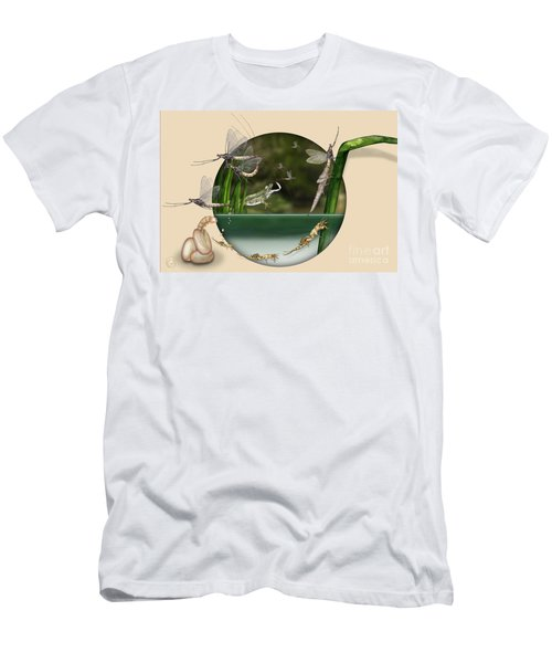Life Cycle Of Mayfly Ephemera Danica - Mouche De Mai - Zyklus Eintagsfliege - Stock Illustration - Stock Image Men's T-Shirt (Athletic Fit)