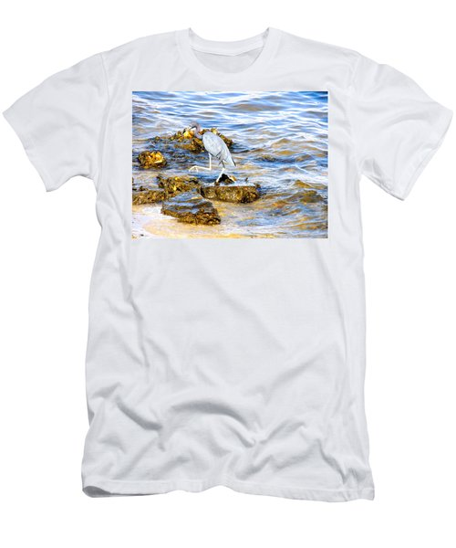 Little Blue Heron Men's T-Shirt (Athletic Fit)
