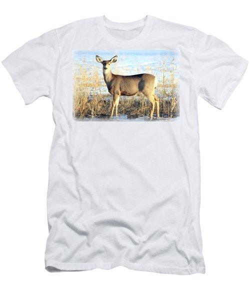 Lonesome Doe Sunset Men's T-Shirt (Athletic Fit)