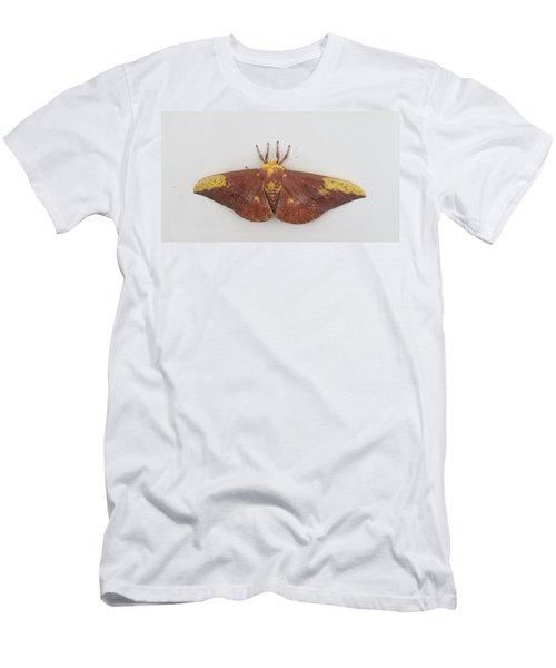 Magnificent Moth Men's T-Shirt (Athletic Fit)