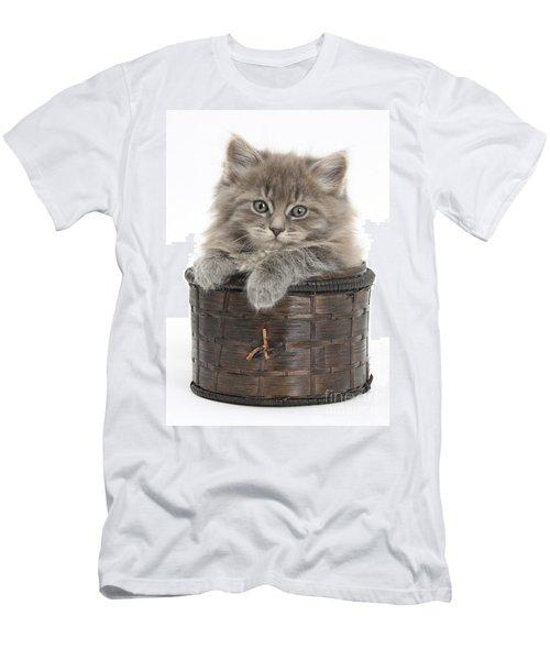 Maine Coon Kitten, Basket Men's T-Shirt (Athletic Fit)