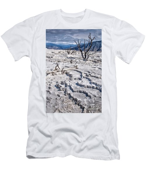 Mammoth Terraces Vertical Men's T-Shirt (Athletic Fit)