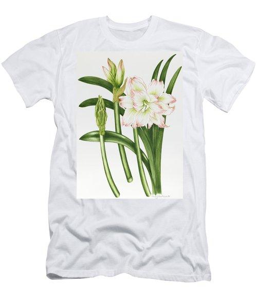 Mary Lou Amaryllis Men's T-Shirt (Athletic Fit)