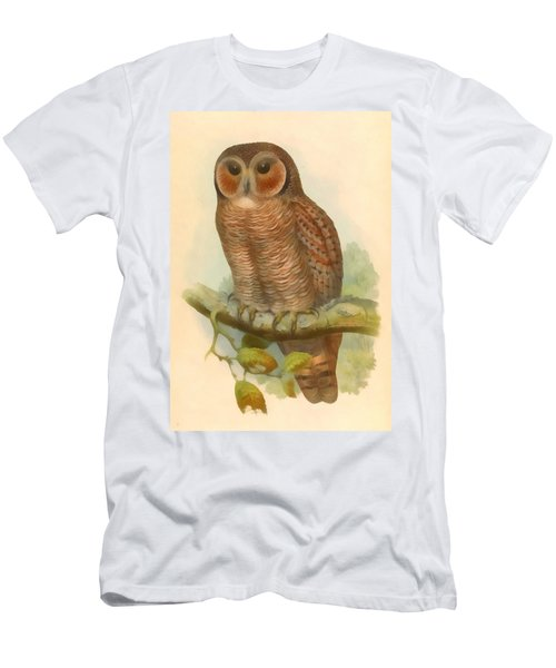 Mottled Wood Owl Men's T-Shirt (Athletic Fit)