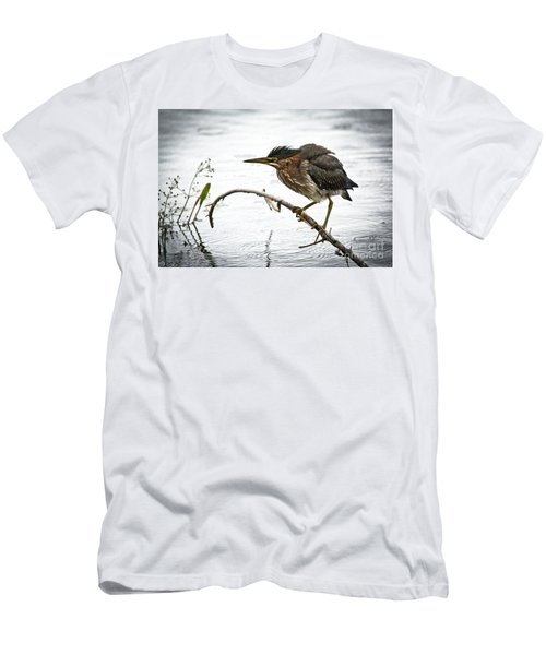 Mr. Green Heron Men's T-Shirt (Athletic Fit)