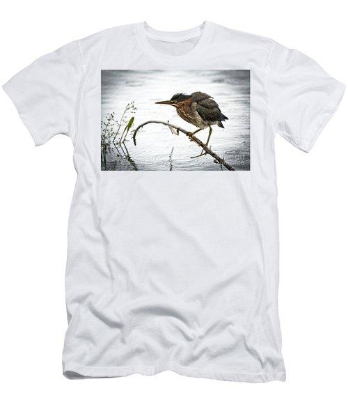 Mr. Green Heron Men's T-Shirt (Slim Fit) by Cheryl Baxter