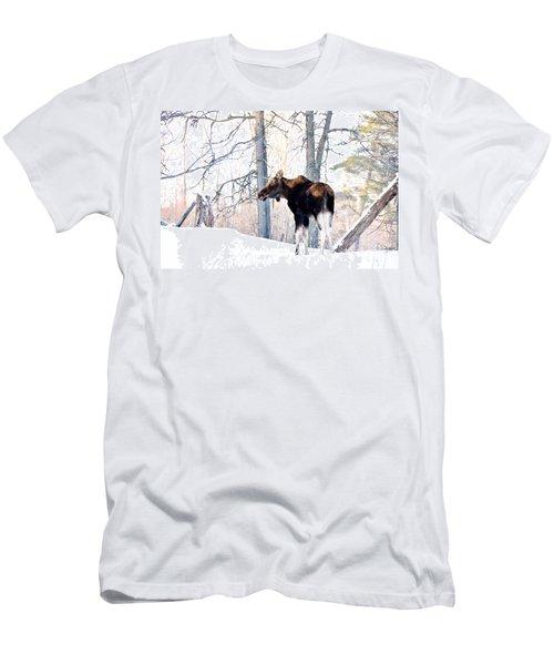 Mr. Moose Men's T-Shirt (Slim Fit) by Cheryl Baxter