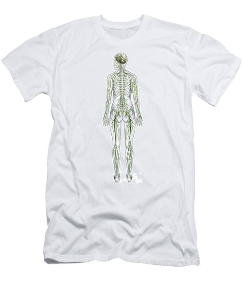 Nervous System, Illustration Men's T-Shirt (Athletic Fit)