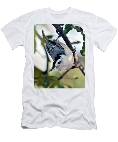Nuthatch 623 Men's T-Shirt (Athletic Fit)