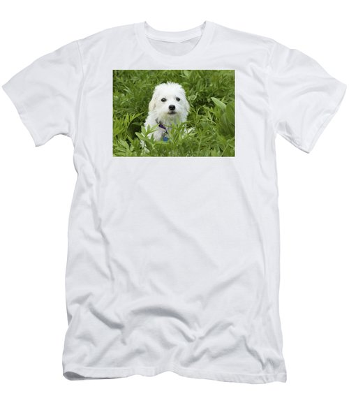 Men's T-Shirt (Slim Fit) featuring the photograph Oops Busted - Cute White Dog by Jane Eleanor Nicholas