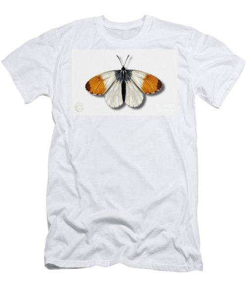 Orange Tip Butterfly - Anthocharis Cardamines Naturalistic Painting - Nettersheim Eifel Men's T-Shirt (Athletic Fit)