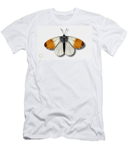 Orange Tip Butterfly - Anthocharis Cardamines Naturalistic Painting - Nettersheim Eifel Men's T-Shirt (Athletic Fit)