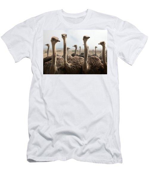 Ostrich Heads Men's T-Shirt (Slim Fit) by Johan Swanepoel