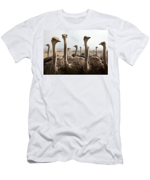 Ostrich Heads Men's T-Shirt (Athletic Fit)