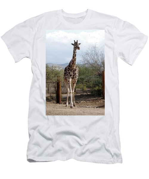 Out Of Africa  Giraffe 1 Men's T-Shirt (Athletic Fit)