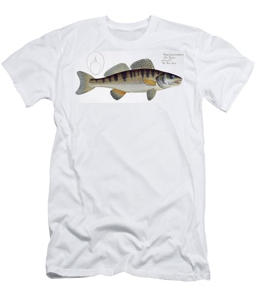 Pike Perch Men's T-Shirt (Athletic Fit)