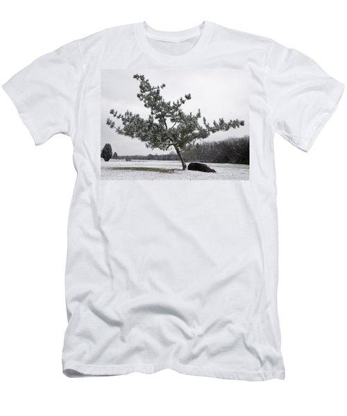 Pine Tree Men's T-Shirt (Slim Fit) by Melinda Fawver