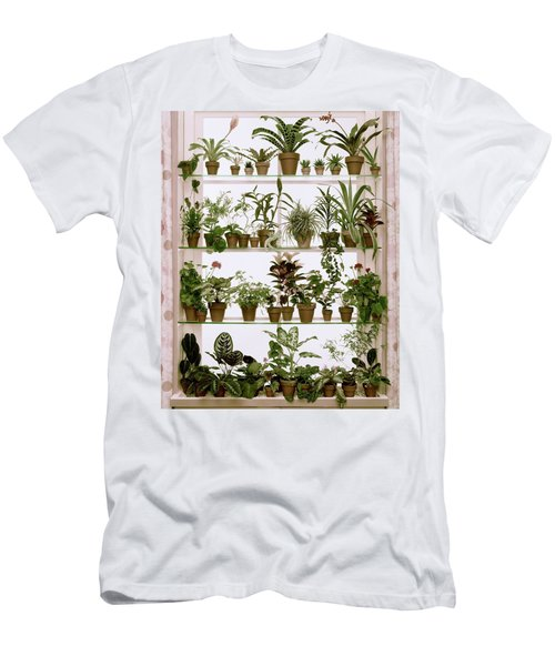Potted Plants On Shelves Men's T-Shirt (Athletic Fit)