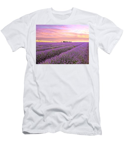Purple Haze - Lavender Field At Sunrise Men's T-Shirt (Athletic Fit)
