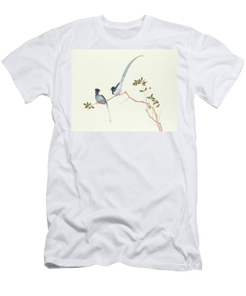 Red Billed Blue Magpies On A Branch With Red Berries Men's T-Shirt (Athletic Fit)
