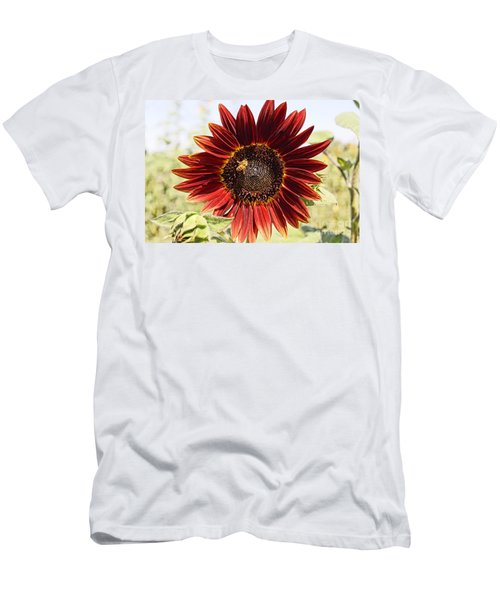 Red Sunflower And Bee Men's T-Shirt (Athletic Fit)