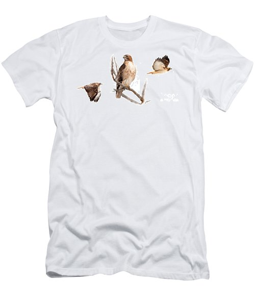 Red Tail Hawk Series Men's T-Shirt (Athletic Fit)