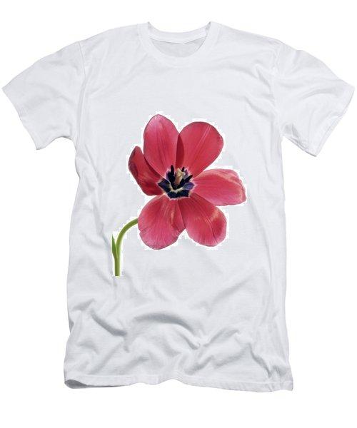 Red Transparent Tulip Men's T-Shirt (Athletic Fit)
