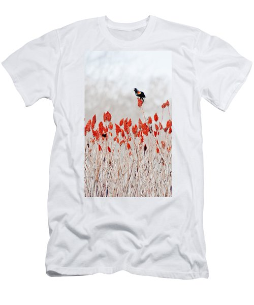 Red Winged Blackbird On Sumac Men's T-Shirt (Athletic Fit)